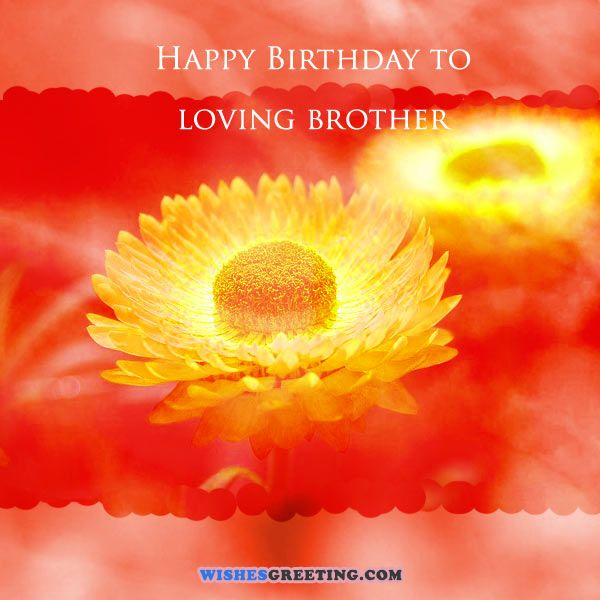 The 140 Happy Birthday Brother Wishes From the Heart