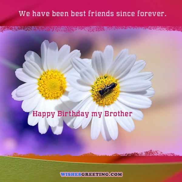 happy-birthday-images-cards-pictures10