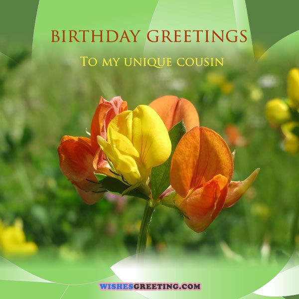 happy_birthday_cousin8
