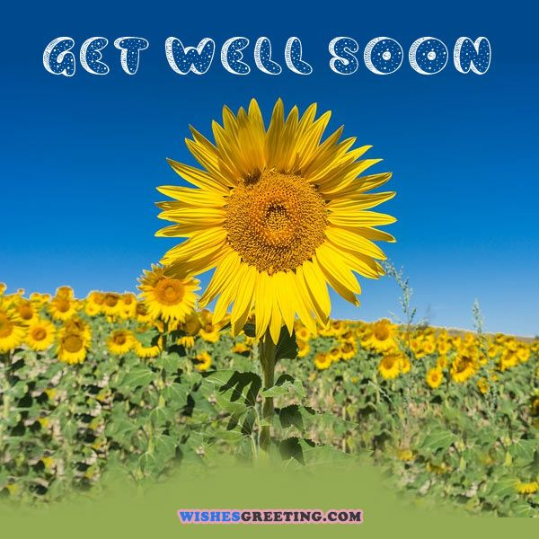 Feel Well Soon Messages: The 105 Get Well Soon Messages For Your Boyfriend