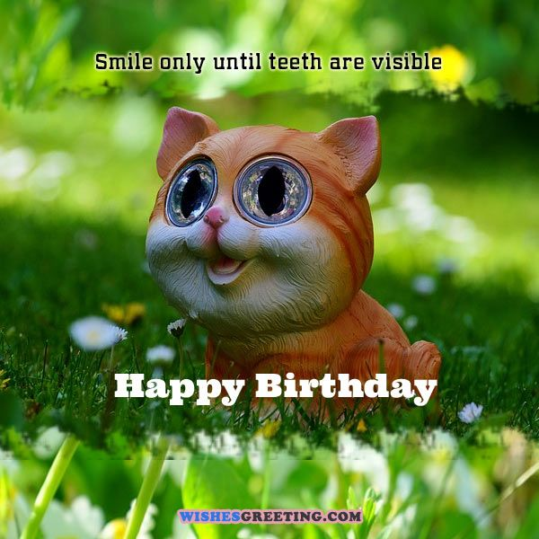 105 Funny Birthday Wishes And Messages