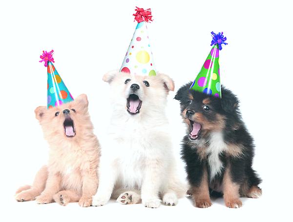 happy 21st birthday06