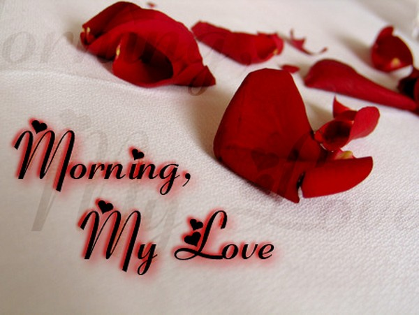 The 60 Good Morning My Love Messages