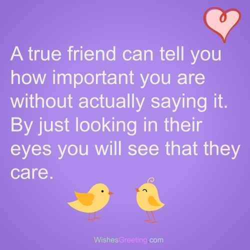 Good Friends Good Company Quotes: The 105 True Friend Quotes