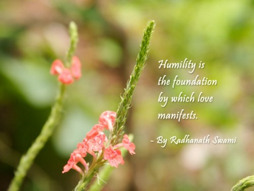 Humility_Quotes4