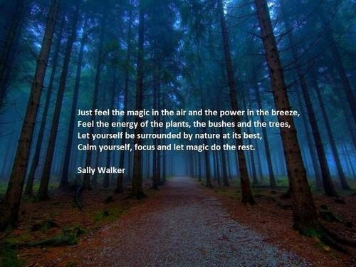 Nature_Quotes3