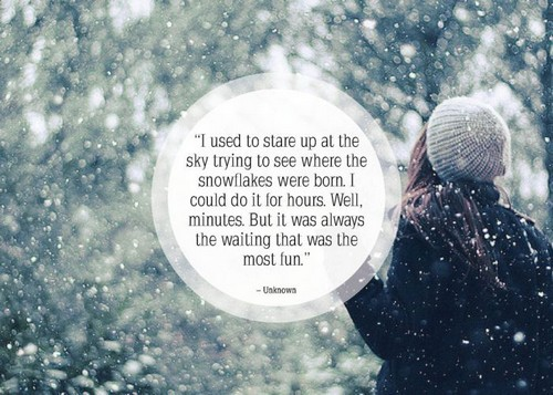 Quotes Winter Fascinating The 105 Winter Quotes  Wishesgreeting