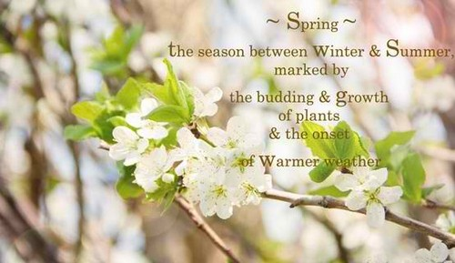 Spring_Quotes4