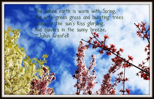 Spring_Quotes6