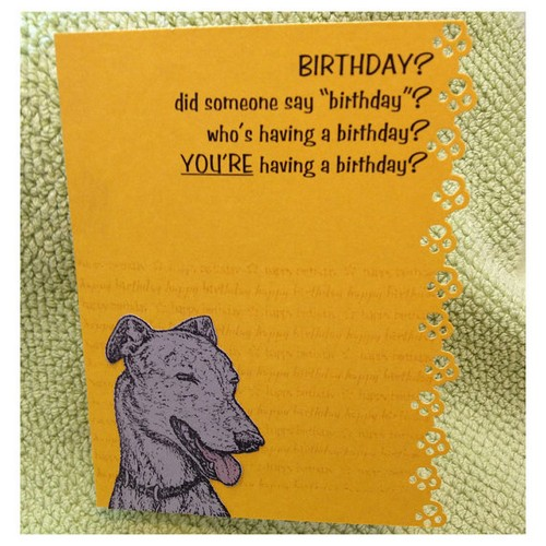 Birthday Wishes For A Dog Lover1