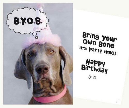 Birthday Wishes For A Dog Lover3