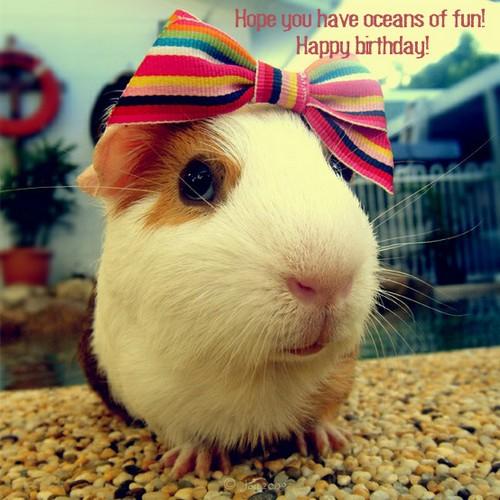 happy_birthday_crazy_lady_wishes1
