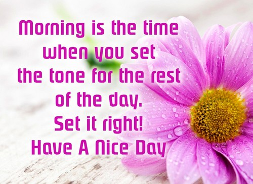 45 Have A Nice Day Quotes Wishesgreeting