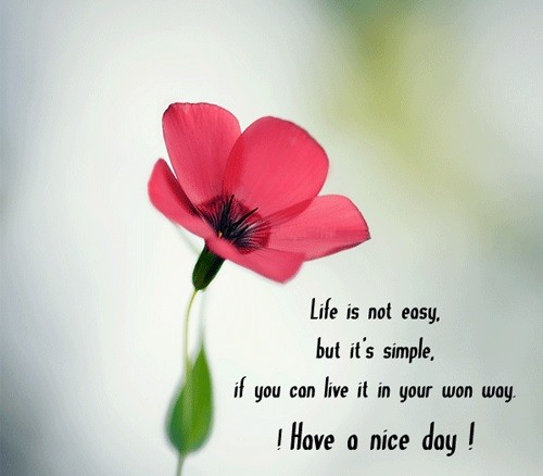 60 Have A Nice Day Quotes WishesGreeting Magnificent Quotes Nice