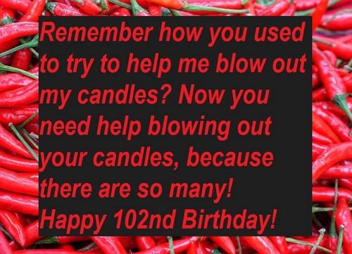 happy_102nd_birthday_wishes2